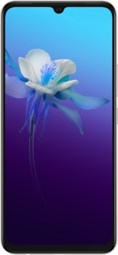 Смартфон Vivo V20: характеристики, цены, где купить